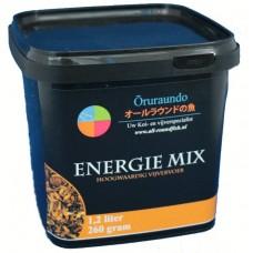 Huismerk Energie mix  1,2L
