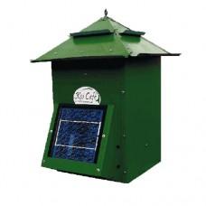 Koi Cafe Zonnepaneel Groen